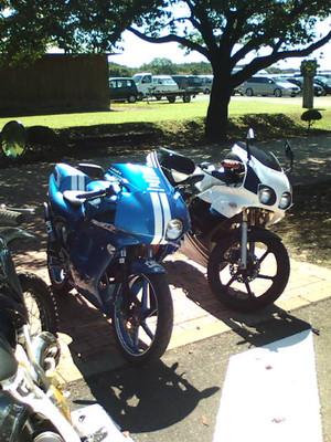 F1000031